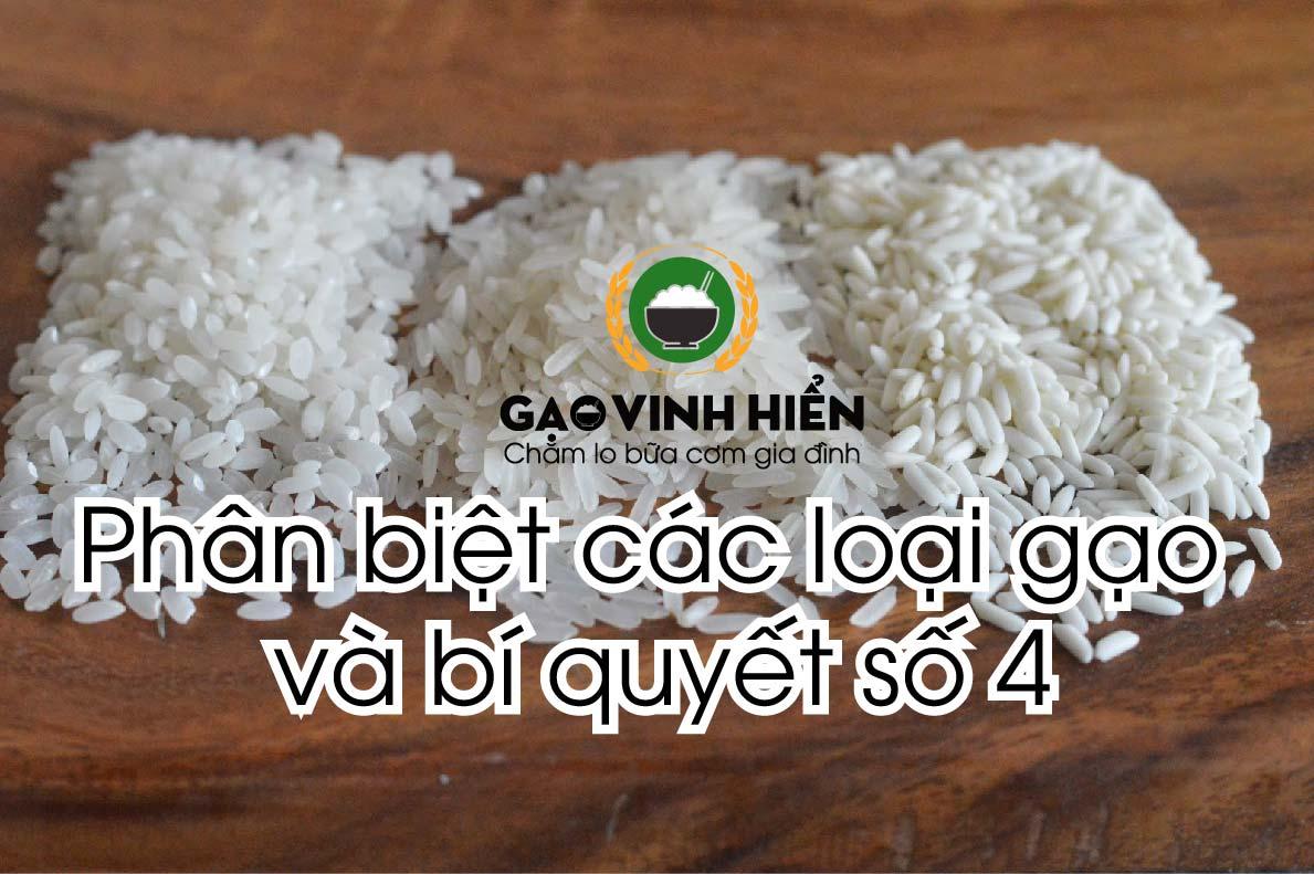 Cách phân biệt các loại gạo phổ thông