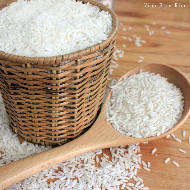 gạo OM 4900 sữa