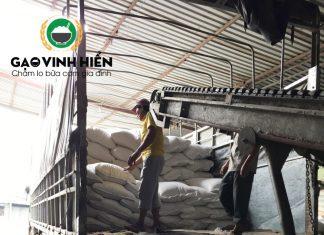 Nhà máy gạo Vinh Hiển lên hàng cho đại lý gạo TP.HCM