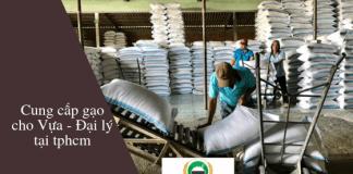 Chợ Gạo Miền Tây cung cấp gạo cho chủ vựa và đại lý tại tphcm