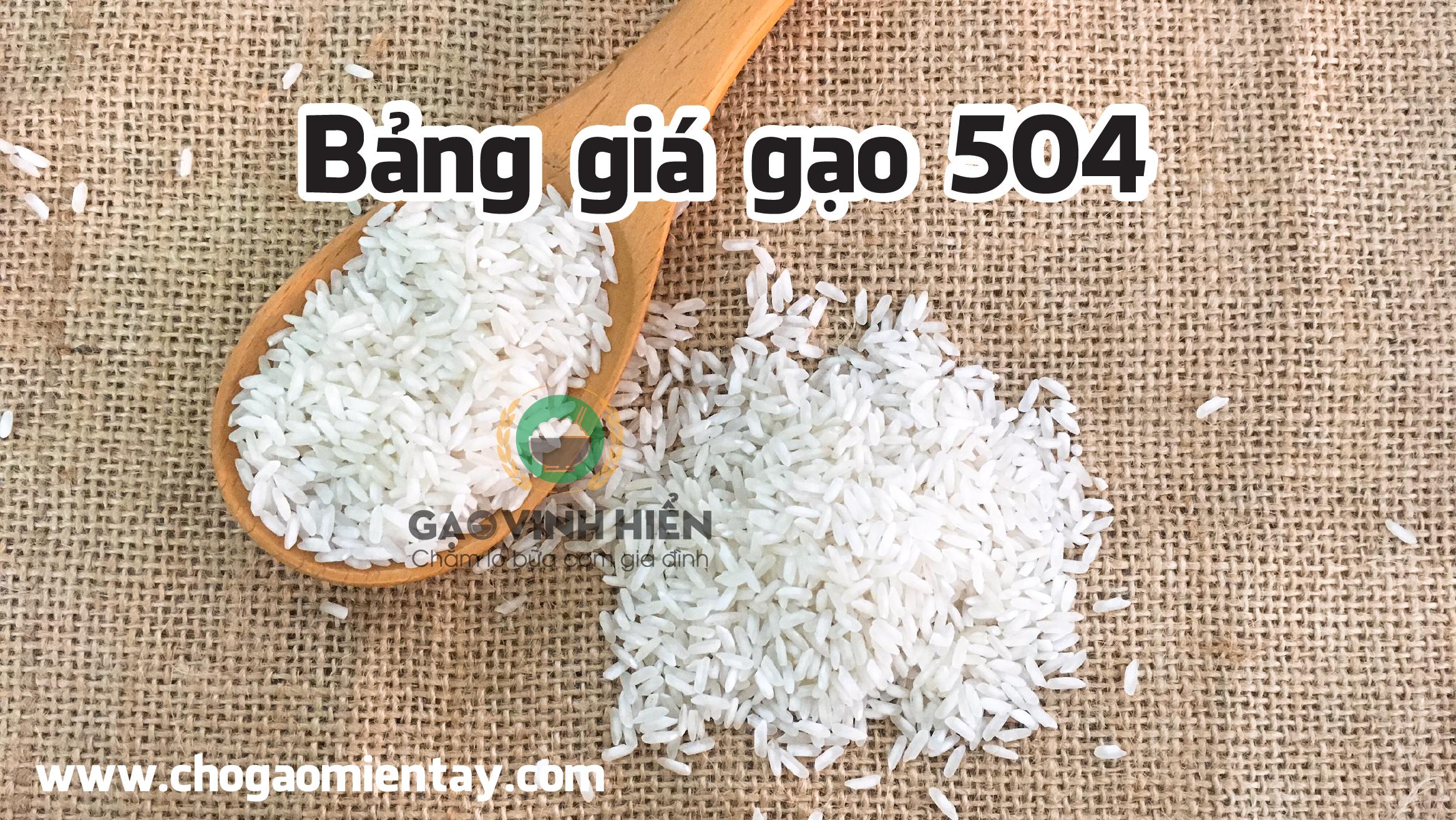 Bảng giá gạo 504 - Chợ gạo miền tây