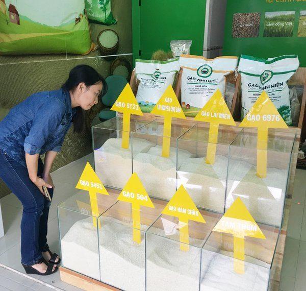 Định giá trong kinh doanh gạo