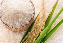Các loại gạo xốp, nở