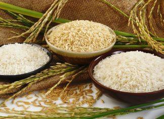 cung cấp gạo cho quán ăn, nhà hàng, khách sạn