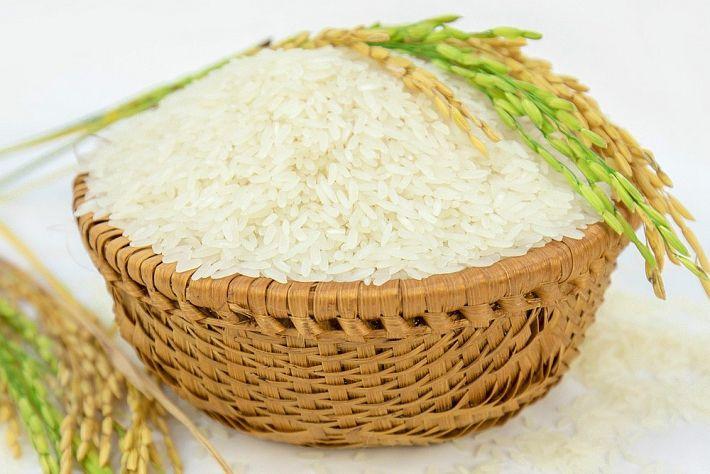 Mua gạo online