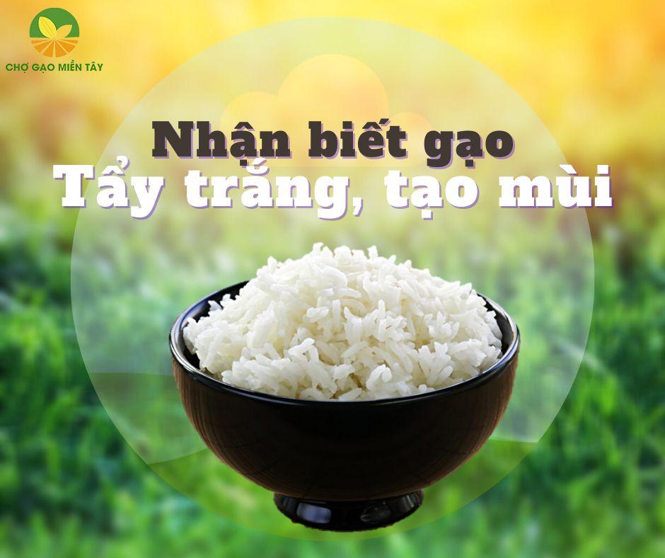 nhận biết gạo tẩy trắng tạo mùi