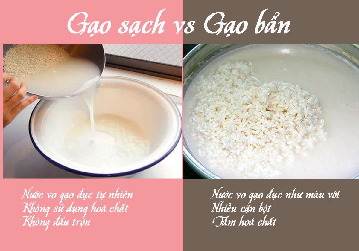 cung cấp gạo sạch giá sỉ;