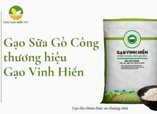 Một trong những loại gạo dẻo được người tiêu dùng yêu thích là gạo Đài Loan Sữa Gò Công.