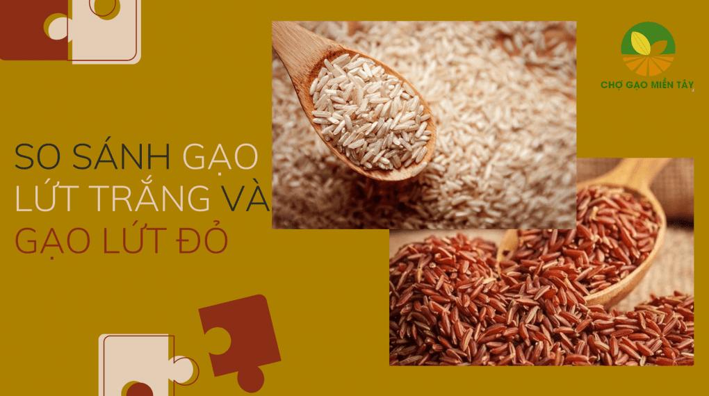 So sánh gạo lứt trắng và gạo lứt đỏ