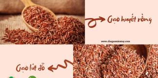 gạo lứt đỏ và gạo huyết rồng