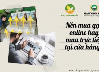 Có nên mua gạo online hay không?