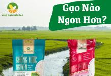 gạo lài long phụng và khổng tước nguyên gạo nào ngon hơn
