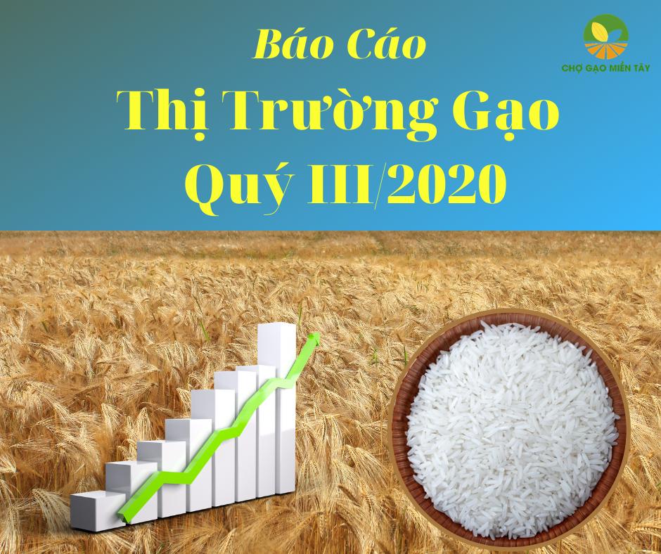 thị trường gạo quý III 2020